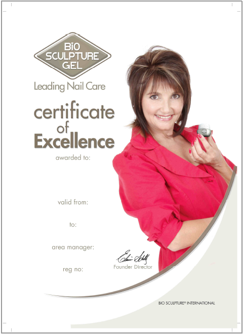certifixate of excellence